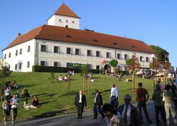 Den otevřených sklepů Čejkovice